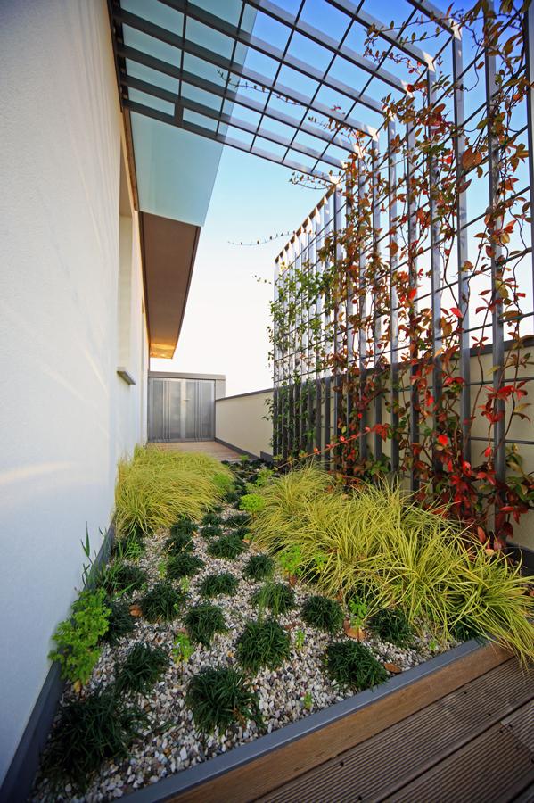 Harpo per il giardino dell 39 edificio san carlo a bassano - Costo impianto irrigazione interrato ...