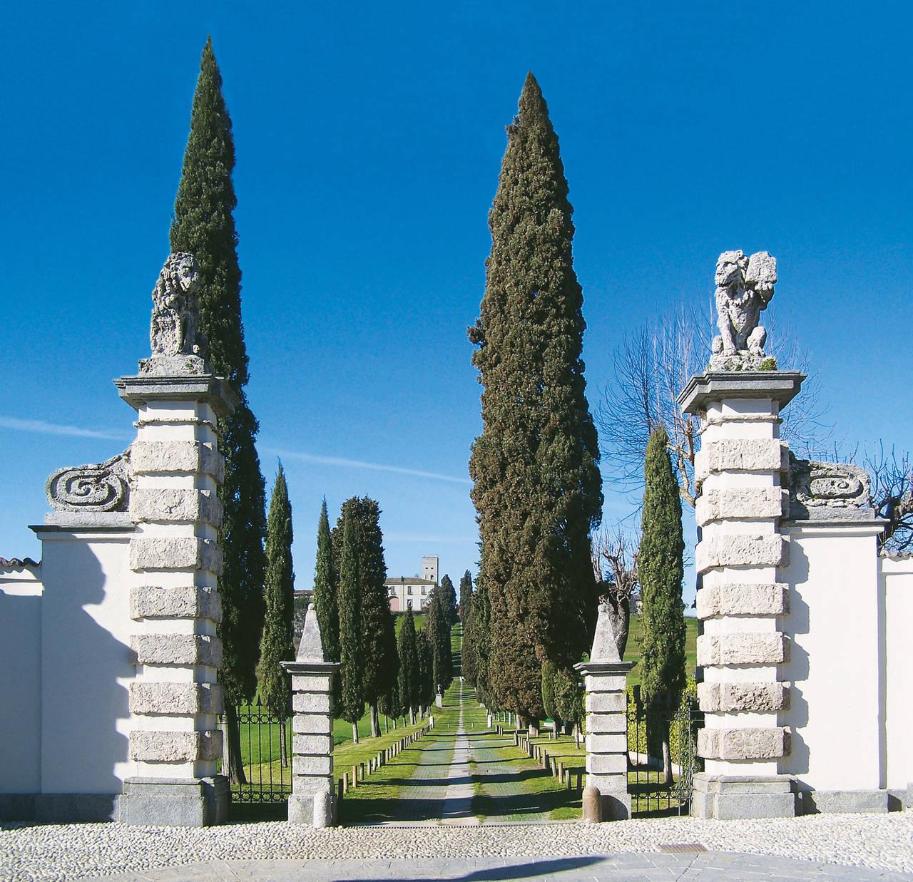 Castello di Inverigo, il viale dei cipressi