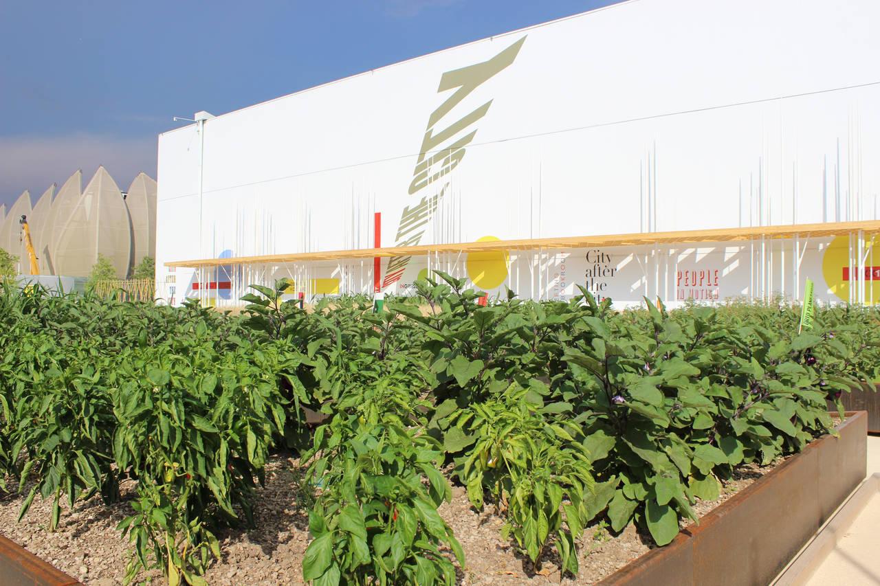 Anche l'orto botanico, collocato nell'area esterna e arricchito da svariate tipologie di piante, è il simbolo di una società che cambia